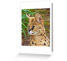 Serval Watcher Greeting Card