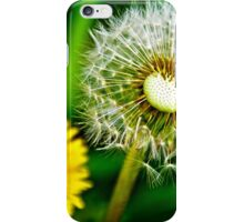 Spring and dandelion iPhone Case/Skin