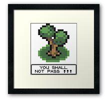 Tshirt Shall not Pass Framed Print