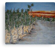Australian River Bend Landscape with Gum trees Canvas Print