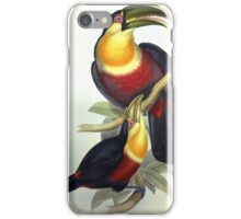 John Gould's Monograph of the Ramphastidae, or Family of Toucans, published i iPhone Case/Skin