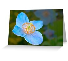 Blue poppy 2 Greeting Card