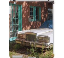 Out Back iPad Case/Skin
