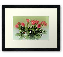 Rose Bouquet Framed Print