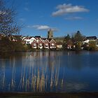 The Mere, Diss, Norfolk by wiggyofipswich