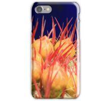 Moroccan Gardens iPhone Case/Skin