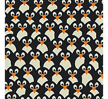 Penguin Pile-Up Photographic Print
