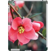Quince Blossoms iPad Case/Skin