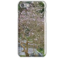 Soft Magnolia blooms compliment the Gravestones... iPhone Case/Skin