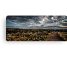 Texas Nature Trail Canvas Print