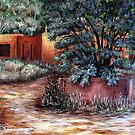 Hidden Hacienda  by Susan Bergstrom