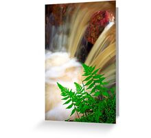 Ferrous thermal water Greeting Card