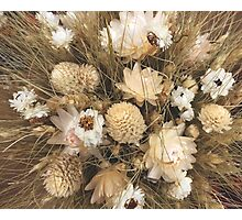 Dried Flowers Photographic Print