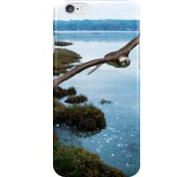 The Flight of the Osprey No. 2 iPhone Case/Skin