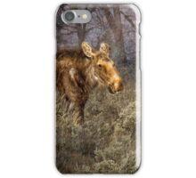 The Calm of a Moose iPhone Case/Skin