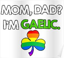 St. Patrick's Gay Gaelic Poster