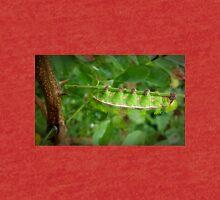 Io Moth Caterpillar Tri-blend T-Shirt
