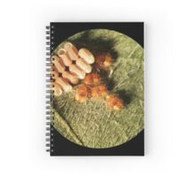 Kudzu Bug Babies Spiral Notebook