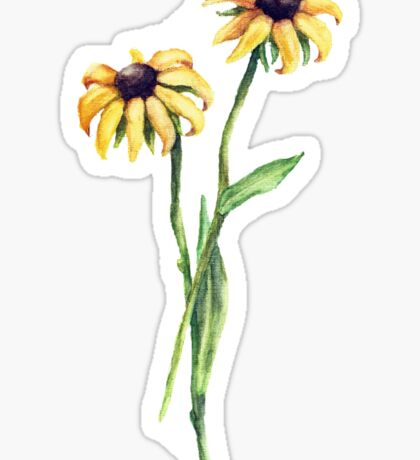 Black Eyed Susan's  Sticker