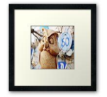 60th Owl Framed Print