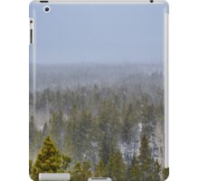 Peak to Peak Highway Snowstorm Study 1  iPad Case/Skin