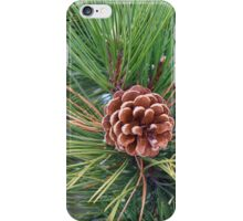 Pine Cone Nest iPhone Case/Skin
