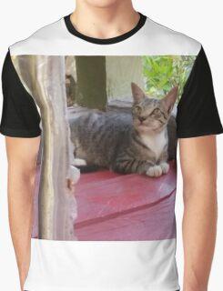 Pondering Cat Graphic T-Shirt