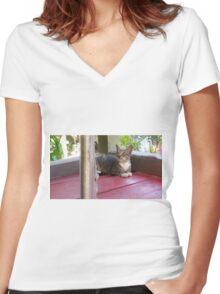Pondering Cat Women's Fitted V-Neck T-Shirt