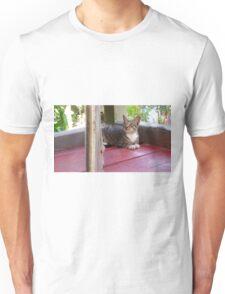 Pondering Cat Unisex T-Shirt