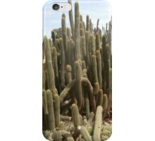 Cactus spike iPhone Case/Skin