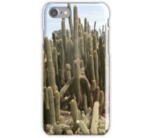 Cactus spike iPhone Case/Skin