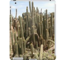 Cactus spike iPad Case/Skin