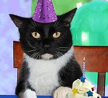 Birthday Black Cat by jkartlife