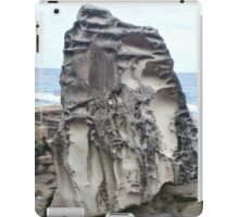 Rocky Nature iPad Case/Skin