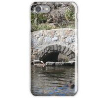 Duck Pond iPhone Case/Skin