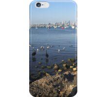 City Birds iPhone Case/Skin