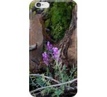 Flowers for the Fallen iPhone Case/Skin