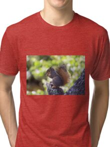 Squirrel On A Snack Break  Tri-blend T-Shirt