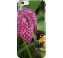 Friendly Bee on Snakes head Fritillary  iPhone Case/Skin