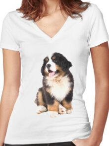 bernese mountain dog puppy Women's Fitted V-Neck T-Shirt