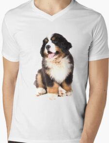 bernese mountain dog puppy T-Shirt