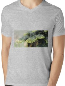 Trametes in decay Mens V-Neck T-Shirt