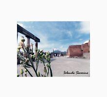 pompeii , naples ,vesuvius , landscape, photography Unisex T-Shirt