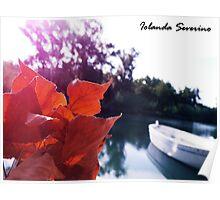 boat, lake , sea, nature Poster