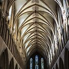 WELLS CATHEDRAL by Michael Carter