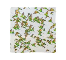 Budgerigar Series- Scarf No.3 Scarf