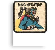 Flash Megatrip  Canvas Print