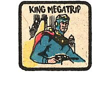 Flash Megatrip  Photographic Print