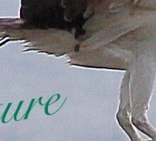 Bird eating Sticker