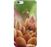 Cardon iPhone Case/Skin